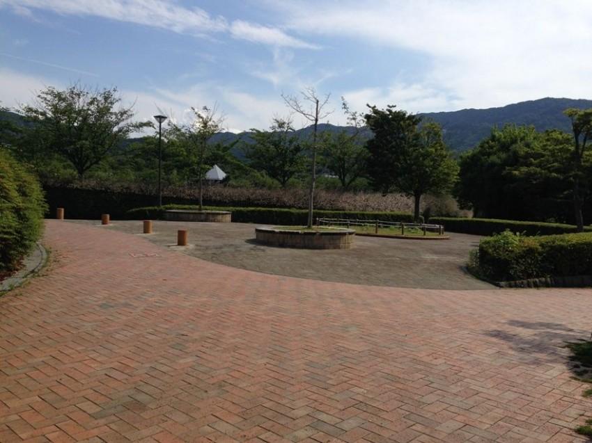 桧原運動公園4