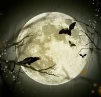 今日10月8日は夕方から皆既月食が観測できます。