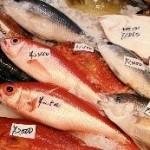 『海鮮屋長崎港 宝洋丸 春日店』は食べ過ぎに注意です。