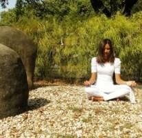 【書籍】無知の壁 「自分」について脳と仏教から考える(サンガ新書)