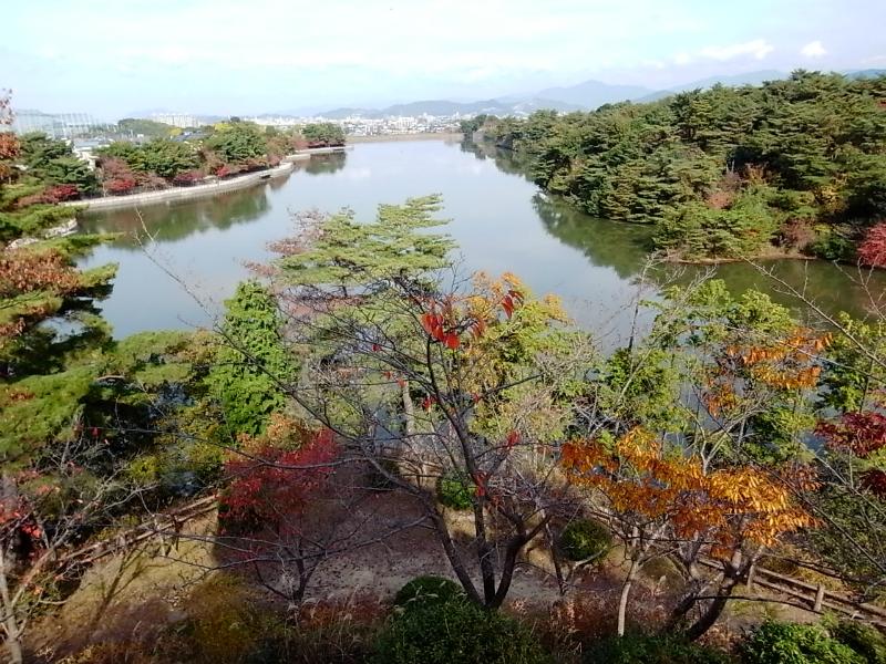 白水大池公園のため池