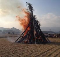 どんど焼きで青竹が破裂する音は迫力満点!