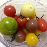 長崎県西海市の西海トマトは日本一美味い!
