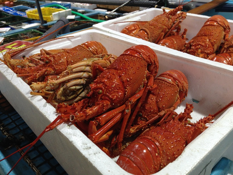 魚魚市場の伊勢海老