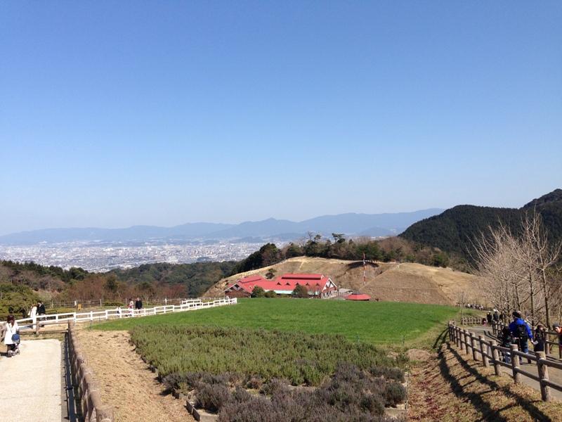 福岡の景色