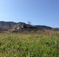 行楽日和!「もーもーらんど油山牧場」に行ってきました。