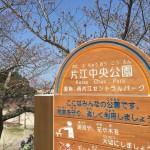 片江中央公園の滑り台は滑り心地が最高!子ども達は病みつきです。