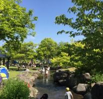 無料入園日!佐賀の吉野ケ里歴史公園で遊んできました。