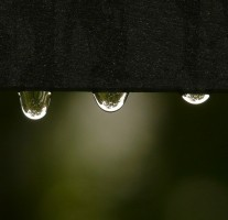 今夜は皆既月食が発生しますが、福岡は雨の予報です。