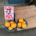 甘夏4個で150円!? 筑紫郡那珂川町の富安青果店が激安でした。