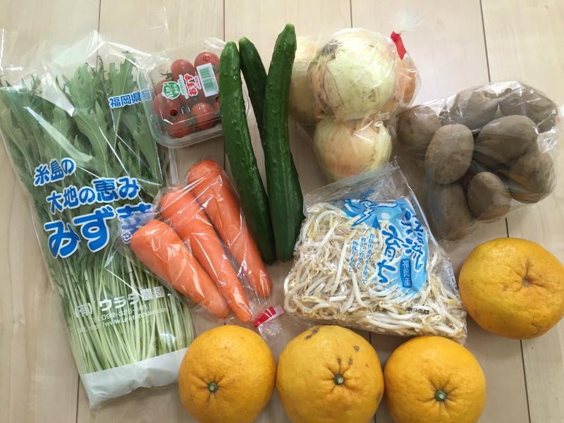 買ってきた野菜