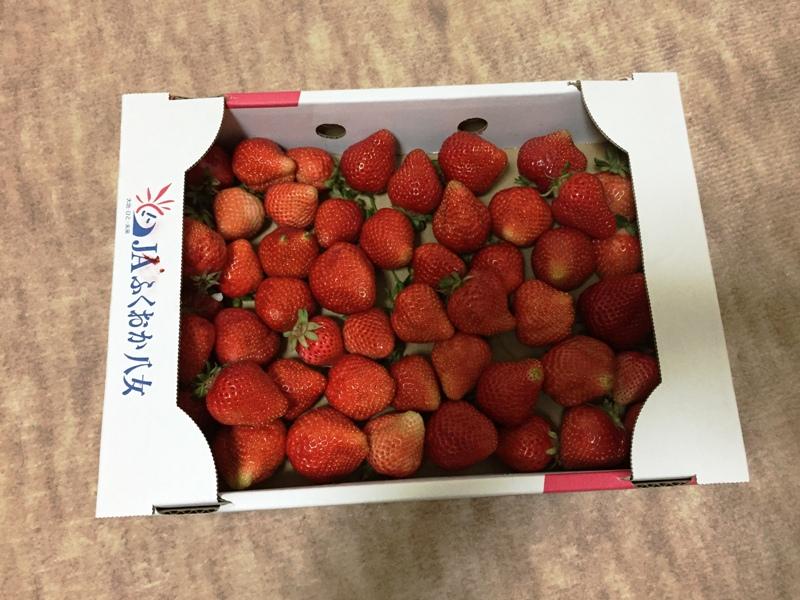八女のイチゴ