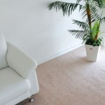 Amazonで江戸間6畳(261×352)用のカーペットを購入。安いけど良品です!