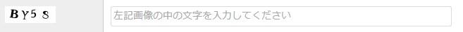 CAPTCHA機能