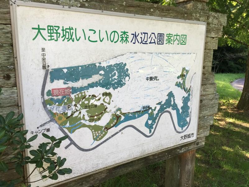 水辺公園案内図