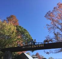 「三瀬ルベール牧場どんぐり村」の草スキーが営業終了。なんだか寂しい感じです。