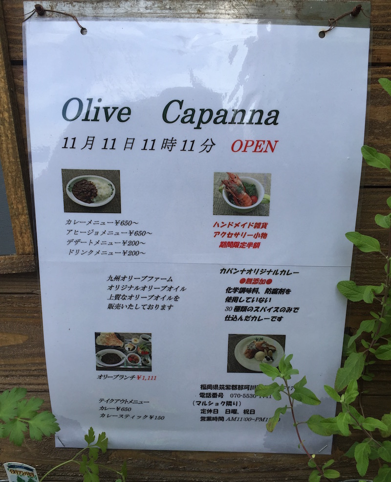 Olive Canpannaオープン予定