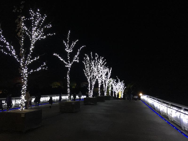 ライトアップ吉野ケ里