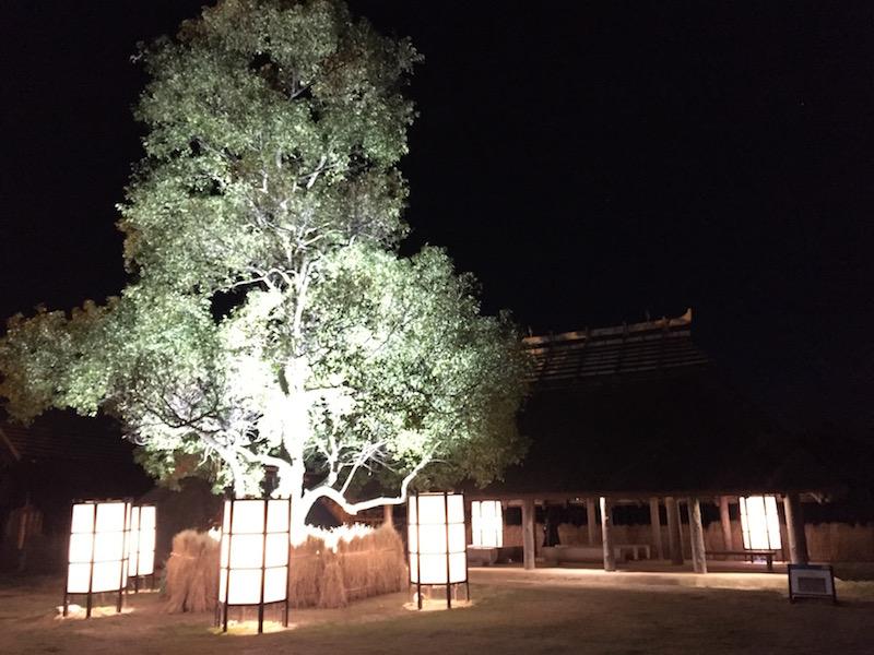吉野ケ里遺跡ライトアップ