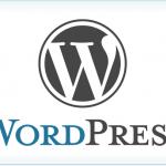 [wordpress] カスタム投稿から特定のカスタム分類のみ表示する方法