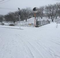 週末の大雪で小学校が臨時休校中の息子は休みを謳歌中。まるでサルだ。