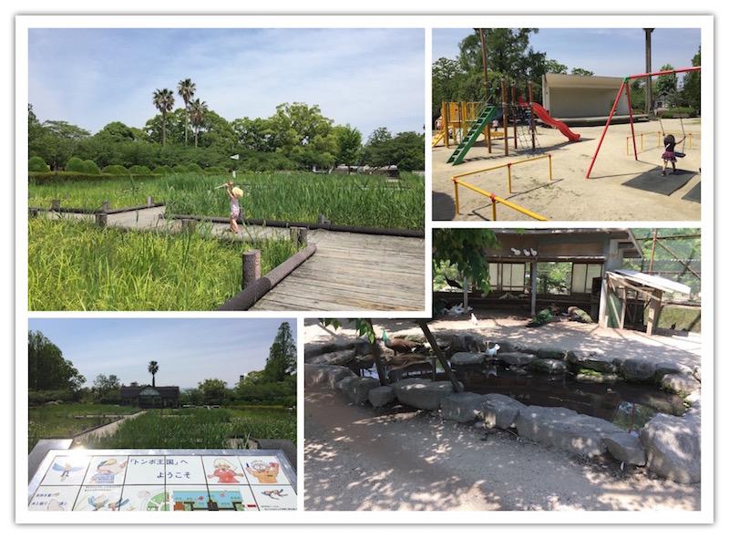 とんぼ池、小動物園