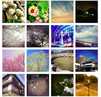 Instagram投稿写真をWEBサイトにギャラリー表示させる方法