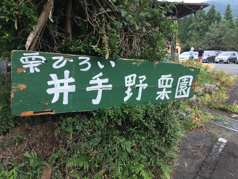 井出野観光栗園