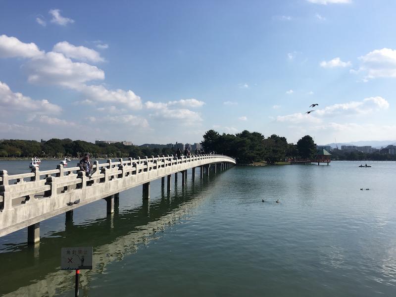 大濠公園の観月橋